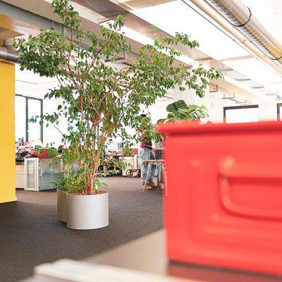 büro-rote-box